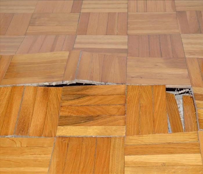Water Damage What To Do When Your Flooring has Water Damage