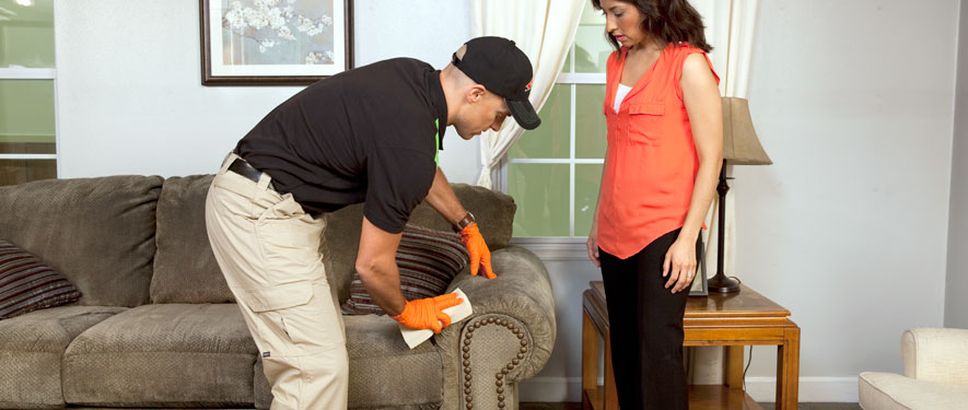 Queens, NY carpet upholstery cleaning