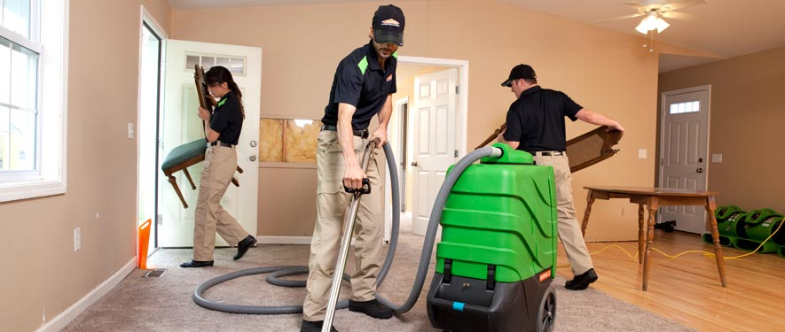 Forest Hills, NY cleaning services